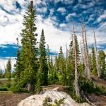 Cedar national park