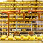 Výrobna sýrů