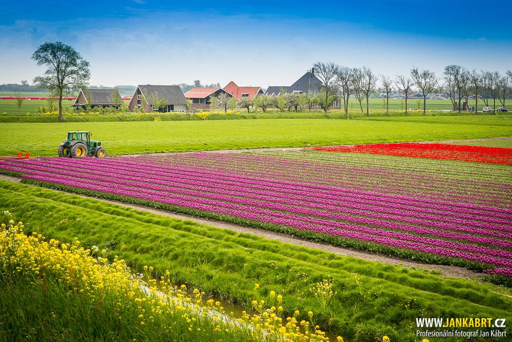 holand_057_landscape